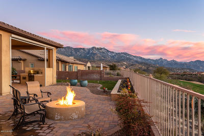 Single Family Home For Sale: 36438 S Cactus Lane