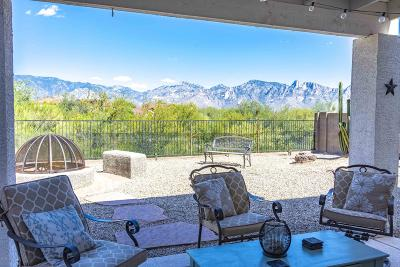 Oro Valley Single Family Home Active Contingent: 13194 N Deergrass Drive