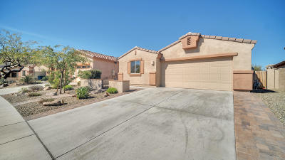 Oro Valley Single Family Home Active Contingent: 13349 N Barlassina Drive