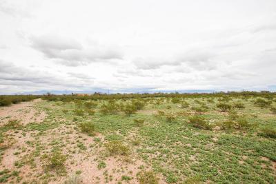 Sahuarita Residential Lots & Land For Sale: 5860 E Comsoft Place