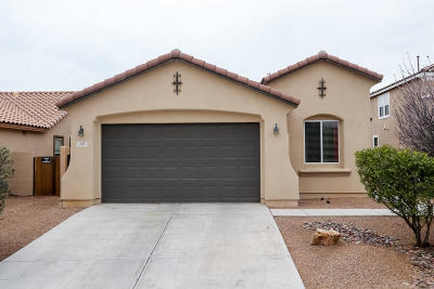 Sahuarita Single Family Home For Sale: 131 W Vuelta Friso