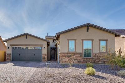 Oro Valley Single Family Home For Sale: 13233 N Rainbow Cactus Court