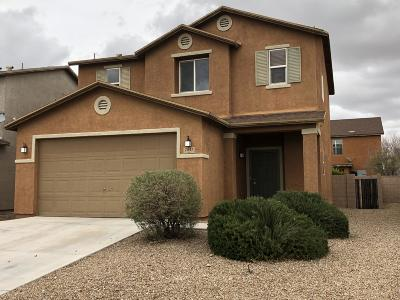 Pima County Single Family Home For Sale: 7047 S Red Maids Drive