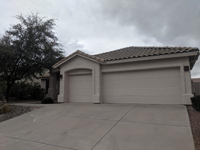 Tucson Single Family Home For Sale: 9784 E Rock Ridge Court
