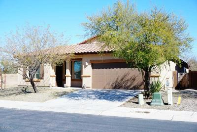 Marana Single Family Home For Sale: 12462 N Bufflehead Drive
