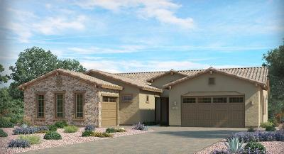 Oro Valley Single Family Home Active Contingent: 674 W Aviator Crossing Drive