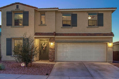 Tucson Single Family Home For Sale: 7226 S Paseo Monte Verde S