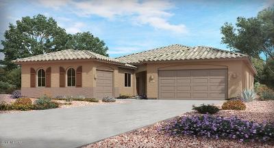 Tucson Single Family Home For Sale: 8488 N Gallant Fox Drive