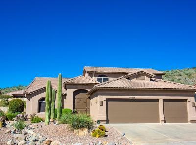 Saddlebrooke Single Family Home For Sale: 38088 S Skyline Drive