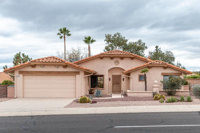 Oro Valley Single Family Home For Sale: 14541 N Del Webb Boulevard