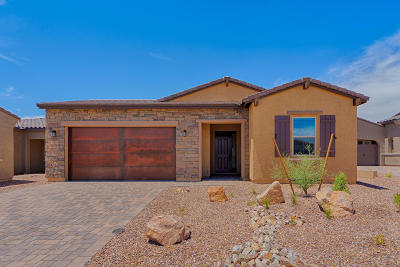 Tucson Single Family Home For Sale: 13409 N Flaxleaf Place