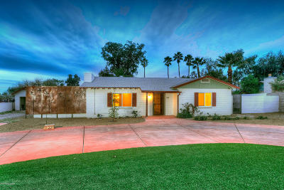 Tucson Single Family Home For Sale: 330 S Calle De Madrid