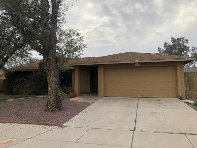 Tucson Single Family Home For Sale: 1412 S Beaver Drive