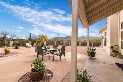 Pima County, Pinal County Single Family Home Active Contingent: 1037 S Desert Senna Loop