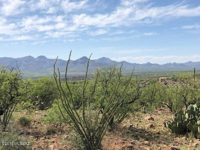 Rio Rico Residential Lots & Land For Sale