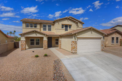 Pima County Single Family Home Active Contingent: 5498 W Red Racer Drive