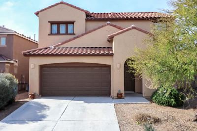 Sahuarita Single Family Home For Sale: 249 W Calle Matraca