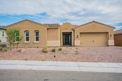 Marana Single Family Home For Sale: 14174 N Hidden Arroyo Pass N
