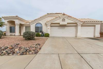 Pima County Single Family Home Active Contingent: 5390 W Fireopal Way