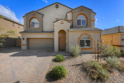 Marana Single Family Home For Sale: 9037 W Rolling Springs Drive