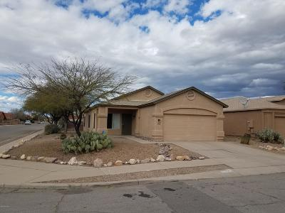 Tucson Single Family Home For Sale: 9101 E Lippia Street
