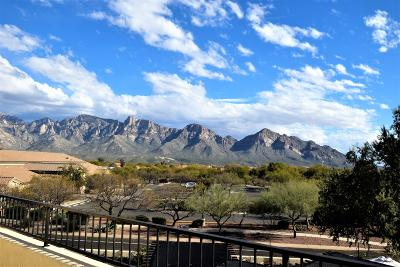 Oro Valley Single Family Home Active Contingent: 95 W Blackstone Road