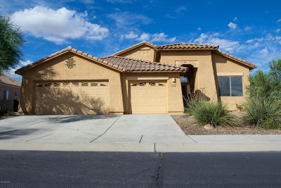 Marana Single Family Home For Sale: 12745 N Satsuma Drive