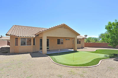 Pima County, Pinal County Single Family Home For Sale: 9312 S Winter Wood Road