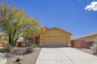 Pima County, Pinal County Single Family Home For Sale: 7368 E Weeping Willow Drive