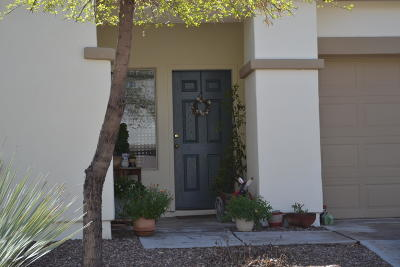 Sahuarita Single Family Home For Sale: 127 W Camino Rio Chiquito
