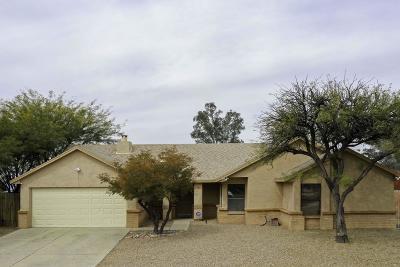 Pima County Single Family Home For Sale: 4860 W Cheetah Street