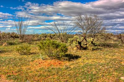 Green Valley Residential Lots & Land For Sale