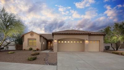 Pima County, Pinal County Single Family Home For Sale: 8216 N White Stallion Place