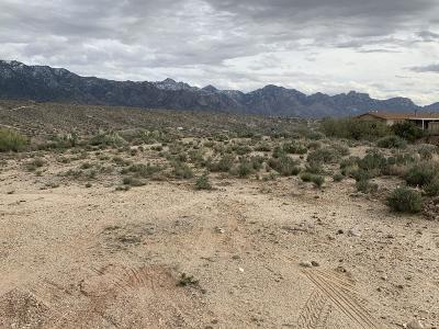 Tucson Residential Lots & Land For Sale: 4615 E Woodpecker Lane