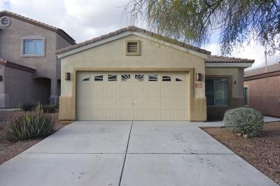 Sahuarita Single Family Home For Sale: 459 E Placita Cordel