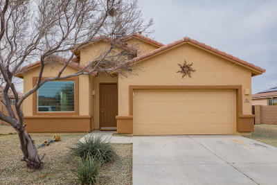 Marana Single Family Home For Sale: 13891 N Swift Spear Drive