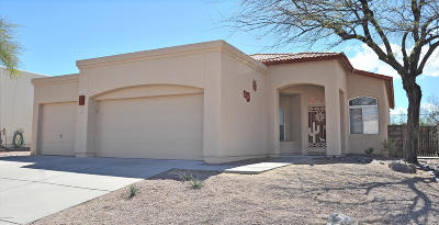 Pima County, Pinal County Single Family Home For Sale: 1737 N Camino Agrios
