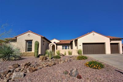 Tucson Single Family Home For Sale: 36402 S Desert Sun Drive