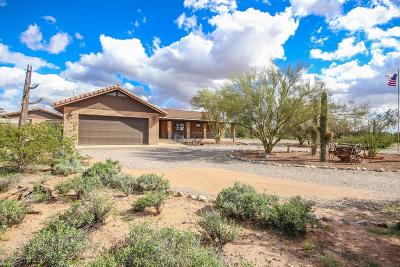 Tucson Single Family Home For Sale: 5302 N Sanders Road