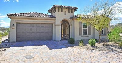 Pima County, Pinal County Single Family Home For Sale: 4306 N Dancing Star Court