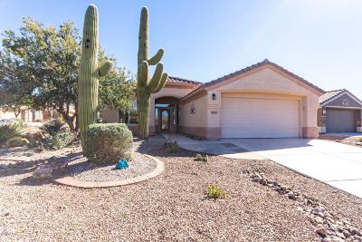 Marana Single Family Home For Sale: 13742 N Wild Hazel Lane