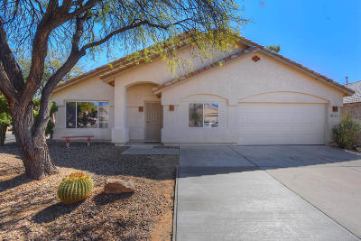 Tucson Single Family Home For Sale: 3815 W Orion Street