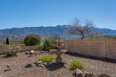 Tucson Single Family Home For Sale: 63407 E Cat Claw Lane