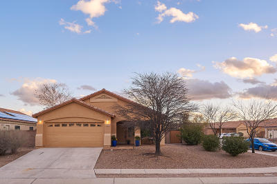 Tucson Single Family Home For Sale: 10490 Bonpland Willow Drive