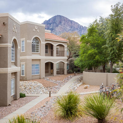 Oro Valley Condo Active Contingent: 1500 E Pusch Wilderness Drive #5201