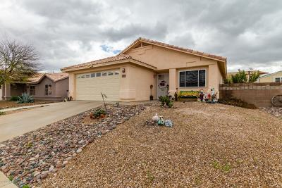 Pima County, Pinal County Single Family Home For Sale: 9542 E Catalina Hills Road