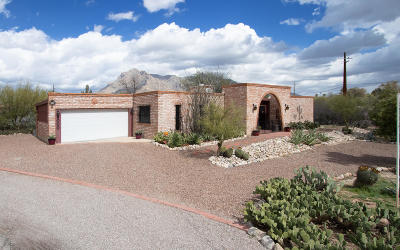 Tucson Single Family Home For Sale: 1000 W Magee Road