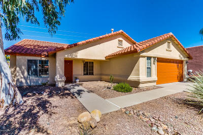 Tucson Single Family Home For Sale: 371 E Streams Edge Place