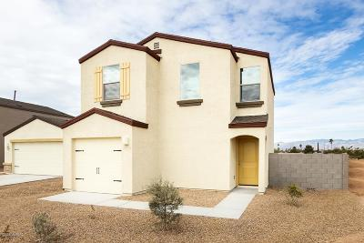 Pima County Single Family Home For Sale: 4017 E Braddock Drive