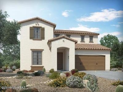 Tucson Single Family Home For Sale: 6748 E Via Arroyo Azul
